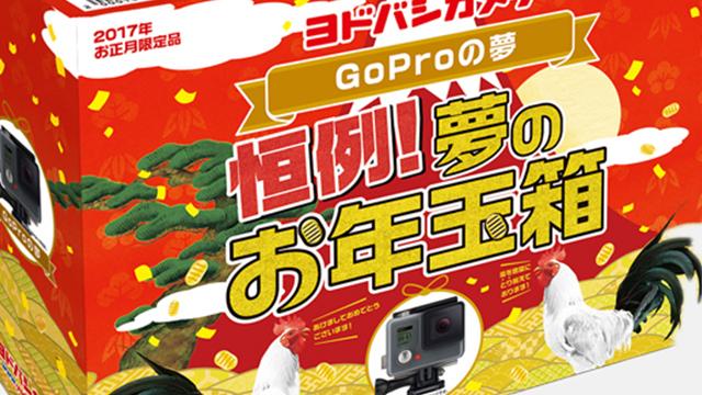 ヨドバシGoProの夢