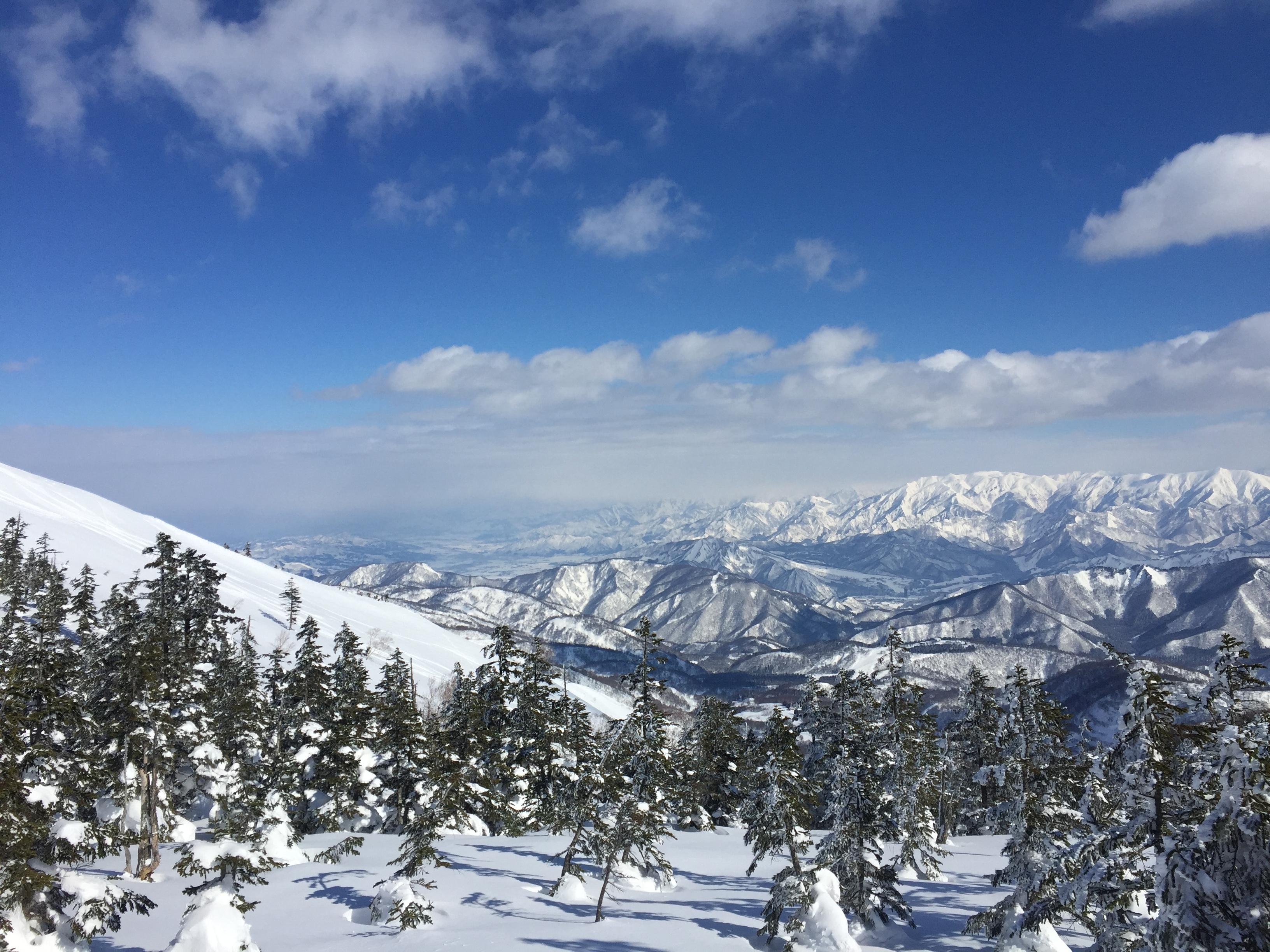 ピーカンかぐら最高かよ。2017.1.22 Snowboardしてきた